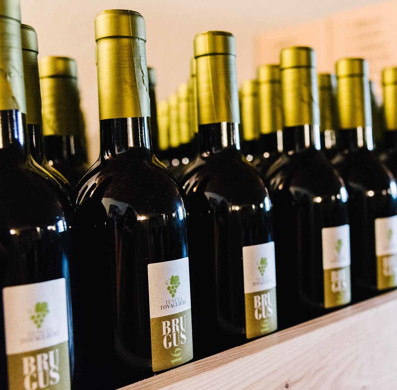 wine farm la cantina brugus